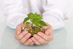 Wachsen der guten Investition stockbild