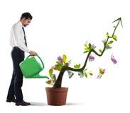Wachsen der Wirtschaft Lizenzfreie Stockbilder