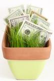 Wachsen Ihrer Investition Stockbild