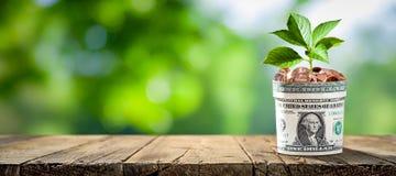 Wachsen Sie Ihre Sparungen lizenzfreie stockfotografie