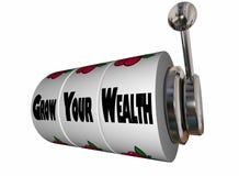 Wachsen Sie Ihren Reichtum erwerben mehr Geld-Spielautomaten Lizenzfreies Stockbild