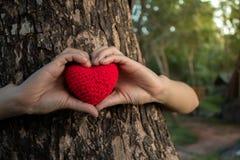 Wachsen Sie Liebe mit Natur Stockfotos