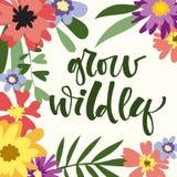 Wachsen Sie wild Handgezogenes modernes Kalligraphie-Motivationszitat im bunten Blumen- und Blattrahmen der einfachen Blüte lizenzfreie abbildung