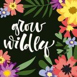 Wachsen Sie wild Handgezogenes modernes Kalligraphie-Motivationszitat im bunten Blumen- und Blattrahmen der einfachen Bl?te stock abbildung