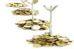 Wachsende Investition Lizenzfreie Stockfotos