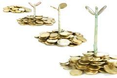 Wachsende Investition Stockfoto