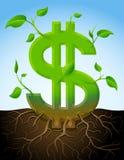 Wachsendes Dollarsymbol wie Anlage mit Blättern und r Stockfoto