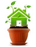 Wachsendes Haussymbol wie Anlage mit Blättern im Blumentopf Stockfotografie