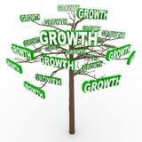 Wachstum-Baum - Wörter auf Zweigen Stockfotografie