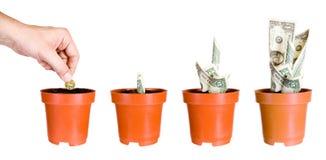 Wachstum von Profitableness von Investitionen Stockbild