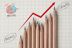 Wachstum zum Erfolg stockbilder
