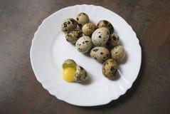 Wachteleier auf einer weißen Platte Ein Ei ist defekt Stockfoto