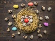 Wachteleier in einem Nest mit bunten dekorativen Eiern für Ostern breiteten um hölzernen rustikalen Draufsichtabschluß des Hinter Lizenzfreies Stockfoto
