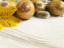 Wachteln leeren schöne Weide Eiostern-Niederlassung auf einem weißen hölzernen Hintergrund der natürlichen Dekoration, Blume Alst Stockfotos