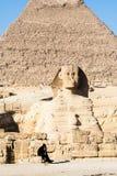 Wachten bij de Sfinx in Giza Stock Fotografie