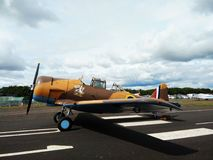 Wacky Wabbit plane Royalty Free Stock Photo