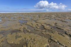 Wadddengebied bij Paesens Engelse Moddergat, Tidalflats bij Paesens-en stock afbeeldingen