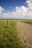 Wadden in Denmark Stock Photo