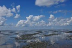 Wadden-mar Imágenes de archivo libres de regalías