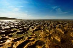 Wadden Overzees in Moddergat, Nederland royalty-vrije stock foto's