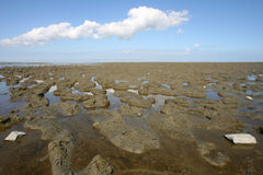 Wadden sea. Low tide at the borders of the Wadden sea in the north of Friesland(Holland Royalty Free Stock Photography