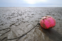 The Wadden Sea Stock Photos