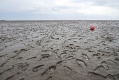 The Wadden Sea Stock Photography