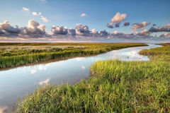 Wadden sea coast by Moddergat Royalty Free Stock Photos