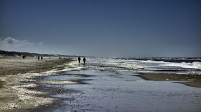 Wadden sea in Henne, Denmark Stock Images