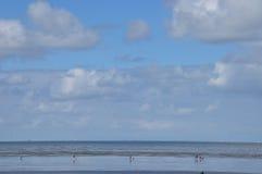 Wadden-sea Stock Photography