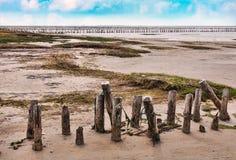 Wadden sea from the island Mando, Stock Photography