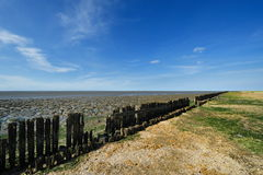 Wadden Sea in Moddergat, the Netherlands Stock Images