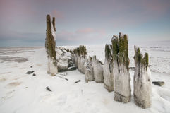 The wadden Sea by Paesens Moddergat Stock Photos
