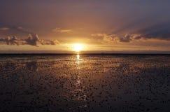 Wadden Sea Royalty Free Stock Image