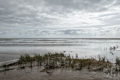 Wadden sea from Sonderho on Fano Denmark Royalty Free Stock Photos