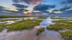 Wadden sea Tidal marsh mud flat. Wadden sea mud-flats of a tidal marsh where new land is being created on the Groningen coast in the Netherlands Stock Images