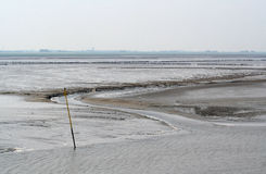 The wadden Sea is a tidal sea Royalty Free Stock Images