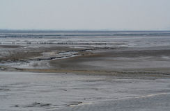 The wadden Sea is a tidal sea Royalty Free Stock Photo
