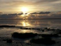 Wadden morze - Niemiecki Północny Denny wybrzeże Fotografia Royalty Free