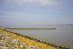 Waddensea with dike in the Nethertlands Royalty Free Stock Images