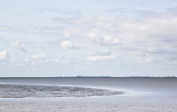 Waddenzee near Lauwersmeer, Friesland, Holland Stock Images