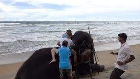 Wadduwa Sri Lanka - Maj 08, 2018: Lokaler hjälper en grabb, och en flicka får av en elefant arkivfilmer