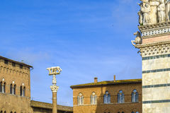 Wadera z Romulus i Remus przed Duomo Siena Zdjęcie Royalty Free