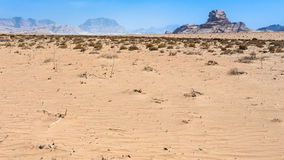 wadi ρουμιού βράχου επιδορπίων sphinx Στοκ Εικόνες