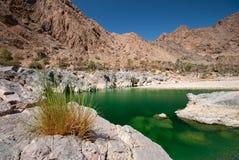 Wadi Al Arbeieen Oman Royalty Free Stock Photography
