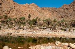 Wadi Al Arbeieen Oman Royalty Free Stock Image