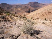 Wadi Bani Khalid Stock Images