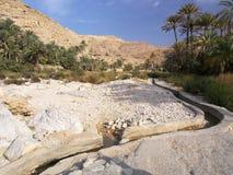 Wadi Bani Khalid. In the morning Royalty Free Stock Photos