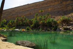 Wadi Bani Khalid Oman Royalty Free Stock Photography