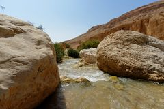 Wadi bin Hammad creek in desert in Jordan. Rapids on Wadi bin Hammad creek in desert in Jordan Royalty Free Stock Photography